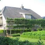 de-Lint-boerderij_00047
